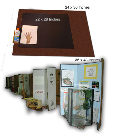 Poster board size in inches